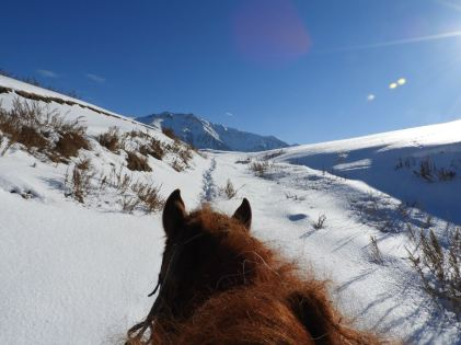 Riding horses in the mountains