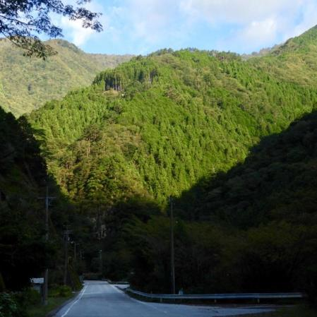 The wild and forested centre of Shikoku